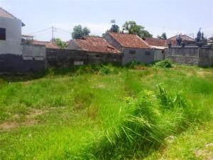 jual tanah di Canggu Bali