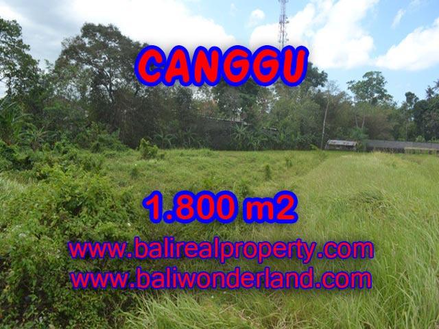 Tanah di Canggu dijual 18 Are di Canggu Batu Bolong Bali
