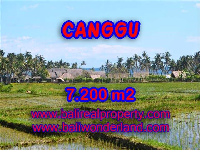 Tanah dijual di Canggu Bali 72 Are di Canggu pererenan