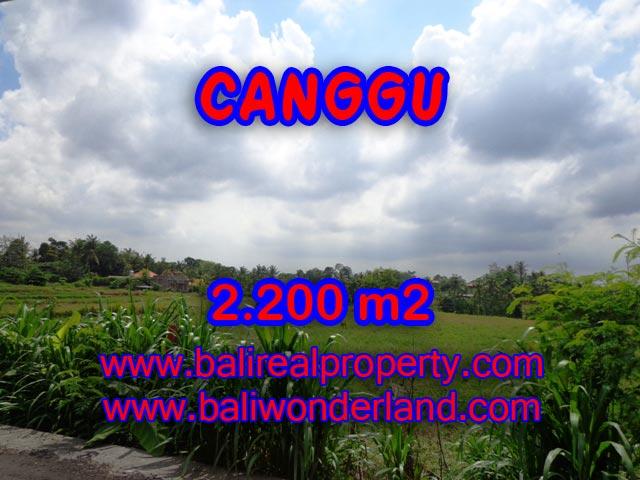 Tanah di Bali dijual 22 Are di Tumbak Bayuh