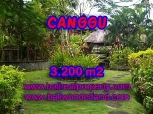 Murah ! Tanah di CANGGU Bali Dijual TJCG129