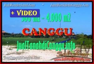 TANAH MURAH di CANGGU BALI DIJUAL 3 Are View Sawah