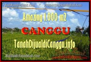DIJUAL TANAH di CANGGU TJCG154