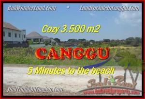 TANAH MURAH JUAL di CANGGU BALI 3.500 m2 View sawah lingkungan villa