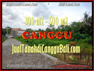 TANAH di CANGGU DIJUAL MURAH Untuk INVESTASI TJCG150