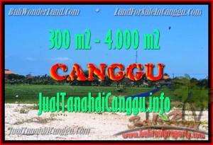 INVESTASI PROPERTY, TANAH di CANGGU DIJUAL MURAH TJCG151