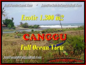 JUAL TANAH MURAH di CANGGU Untuk INVESTASI TJCG162