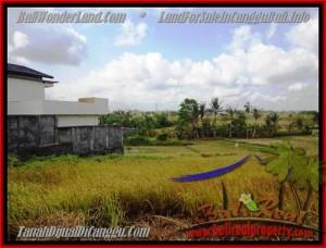 TANAH MURAH di CANGGU BALI DIJUAL 5 Are View sawah lingkungan villa