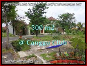 TANAH MURAH di CANGGU BALI DIJUAL 500 m2 di Canggu Brawa