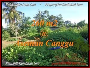 JUAL TANAH di CANGGU BALI TJCG174