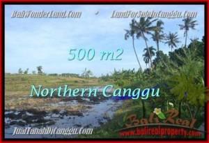 TANAH MURAH DIJUAL di CANGGU BALI TJCG181