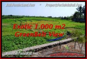 JUAL TANAH di CANGGU 1,000 m2 View Sawah