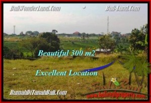 TANAH MURAH JUAL   CANGGU 300 m2  View sawah lingkungan villa