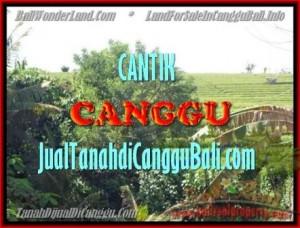 TANAH MURAH DIJUAL di CANGGU TJCG143