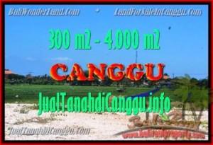 TANAH MURAH di CANGGU JUAL 300 m2 View Sawah