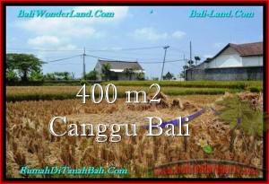 JUAL MURAH TANAH di CANGGU BALI 4 Are di Canggu Pererenan