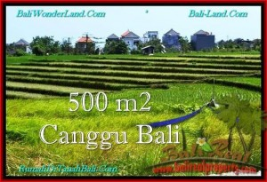 DIJUAL TANAH MURAH di CANGGU BALI 5 Are di Canggu Brawa