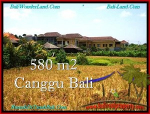 TANAH di CANGGU BALI DIJUAL 5.8 Are View sawah, lingkungan villa