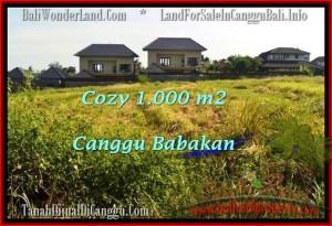 JUAL TANAH MURAH di CANGGU BALI 1,000 m2 View sawah link villa