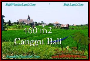 TANAH di CANGGU BALI DIJUAL 4.6 Are di Canggu Brawa