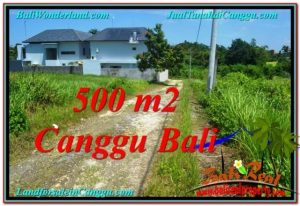 TANAH di CANGGU BALI DIJUAL 5 Are View sawah lingkungan villa