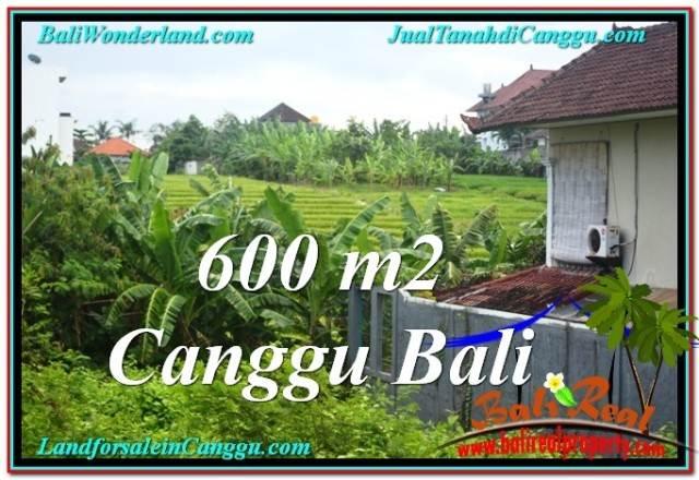 TANAH di CANGGU DIJUAL 600 m2 di Canggu Brawa