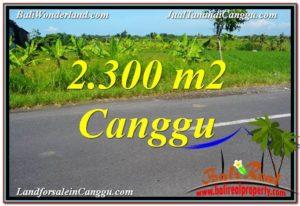 JUAL MURAH TANAH di CANGGU BALI 2,300 m2 di Canggu echo beach