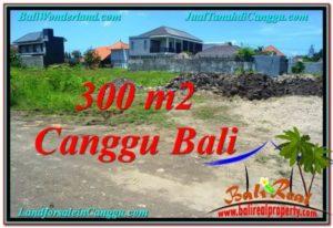 JUAL MURAH TANAH di CANGGU 300 m2 di Canggu Brawa