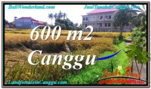 TANAH DIJUAL di CANGGU BALI 600 m2 di Canggu Pererenan