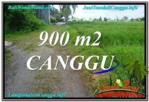 TANAH DIJUAL di CANGGU BALI 9 Are di Canggu Batu Bolong
