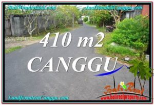 TANAH MURAH di CANGGU DIJUAL 4.1 Are di Canggu Pererenan