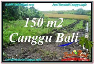JUAL MURAH TANAH di CANGGU BALI 150 m2 View sawah