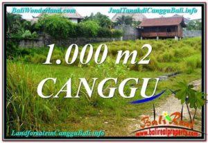TANAH DIJUAL di CANGGU 10 Are di Canggu Pererenan