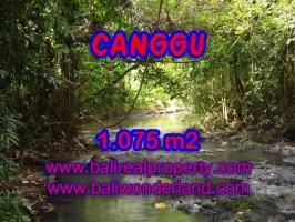 Tanah di Canggu Bali dijual 1.075 m2 View sawah di Canggu Pererenan