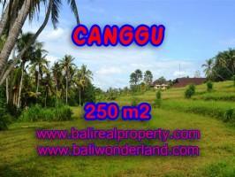 Tanah dijual di Bali 250 m2 View sawah di Canggu Pererenan
