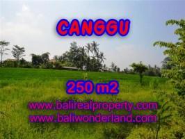 TANAH DI CANGGU MURAH DIJUAL TJCG135 - INVESTASI PROPERTY DI BALI