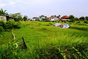 Jual Tanah di Canggu Bali 20 are dekat pantai dan hotel Sentosa – LCG032E