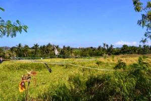 Tanah dijual di Canggu Bali  View sawah dekat sungai 17 are – TJCG034J