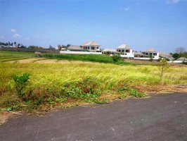 Jual Tanah di canggu Bali view sawah di pinggir jalan – TJCG054E