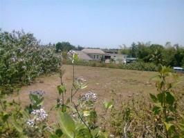 Tanah Dijual di Canggu Bali dengan view lingkungan villa 11 are – TJCG060E