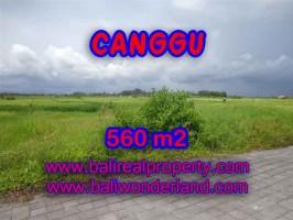 TANAH DI CANGGU MURAH DIJUAL TJCG138 - INVESTASI PROPERTY DI BALI