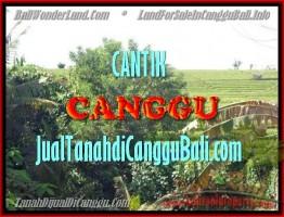 TANAH DIJUAL MURAH di CANGGU TJCG143