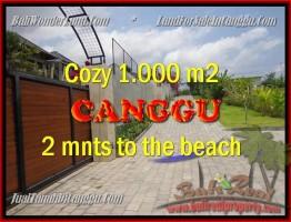 JUAL TANAH di CANGGU 10 Are di Canggu Pererenan