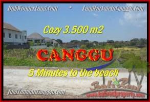 TANAH di CANGGU DIJUAL MURAH Untuk INVESTASI TJCG165