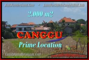 TANAH MURAH DIJUAL di CANGGU 2.000 m2 di Canggu Kayutulang