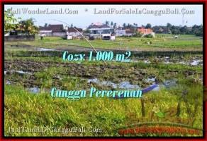 JUAL MURAH TANAH di CANGGU BALI 10 Are View sawah link villa