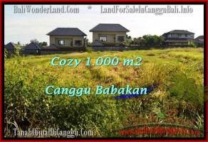 JUAL TANAH di CANGGU 1,000 m2 di Canggu Batu Bolong