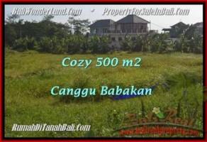 TANAH MURAH DIJUAL di CANGGU BALI 500 m2 di Canggu Batu Bolong