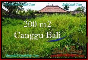 TANAH MURAH  di CANGGU BALI DIJUAL 200 m2  Lingkungan villa