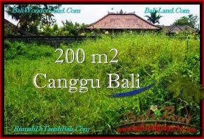TANAH DIJUAL di CANGGU 200 m2  Lingkungan villa